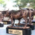 TriWaco Awards